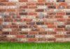 Jak usunąć grzyba ze ściany?